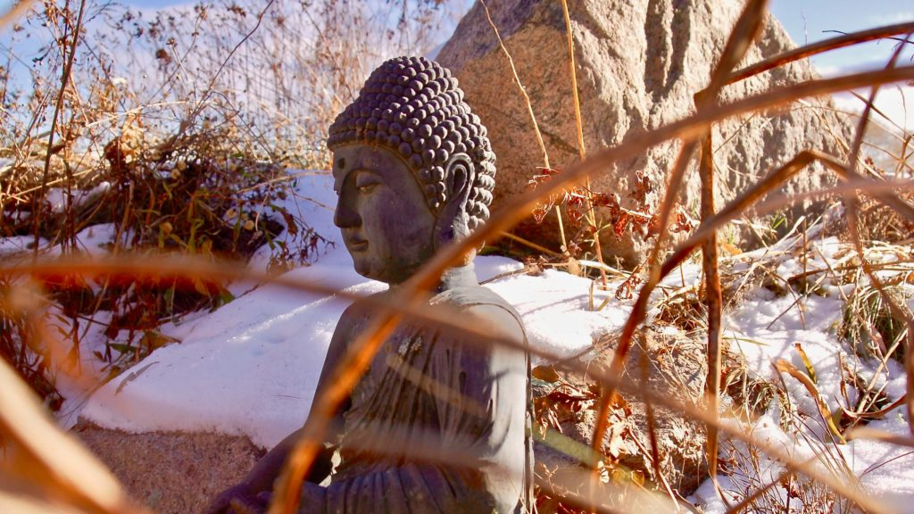 Ithaca Zen Center buddha in frozen lotus pond