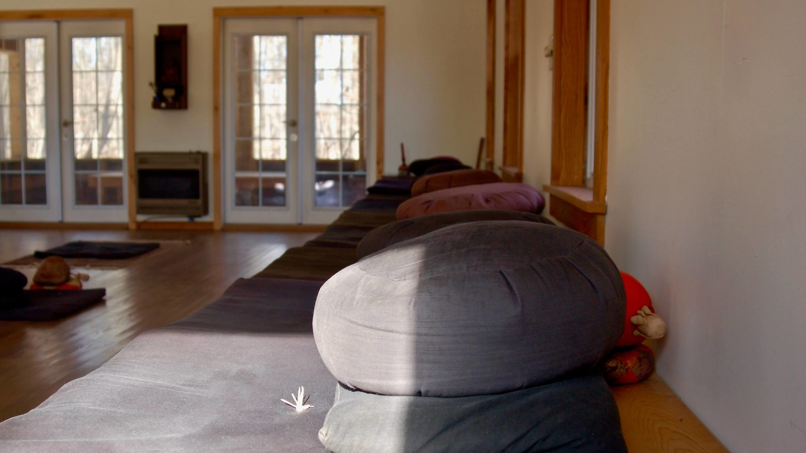 Ithaca Zen Center zendo interior sunbeam